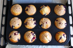 Blueberry muffinskopie
